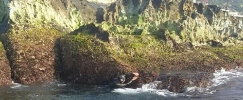Marina Perezagua toca costa africana y se agarra a roca con fuerte corriente