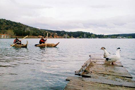 Los patos han estado expectantes esperando a nuestros aventureros al final de la etapa de hoy